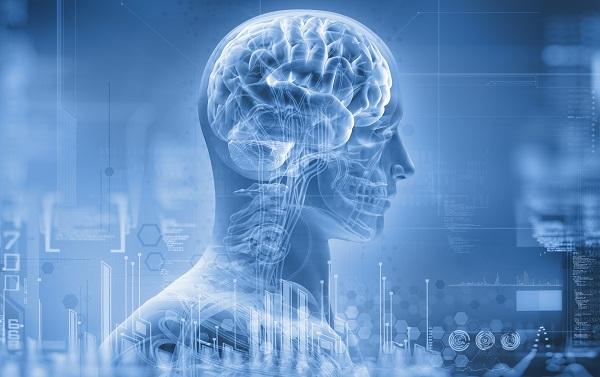 le cerveau a la mémoire du futur